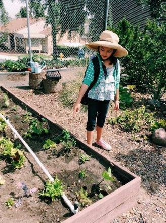 school garden maggie